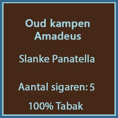 Oud kampen Amadeus 5st.
